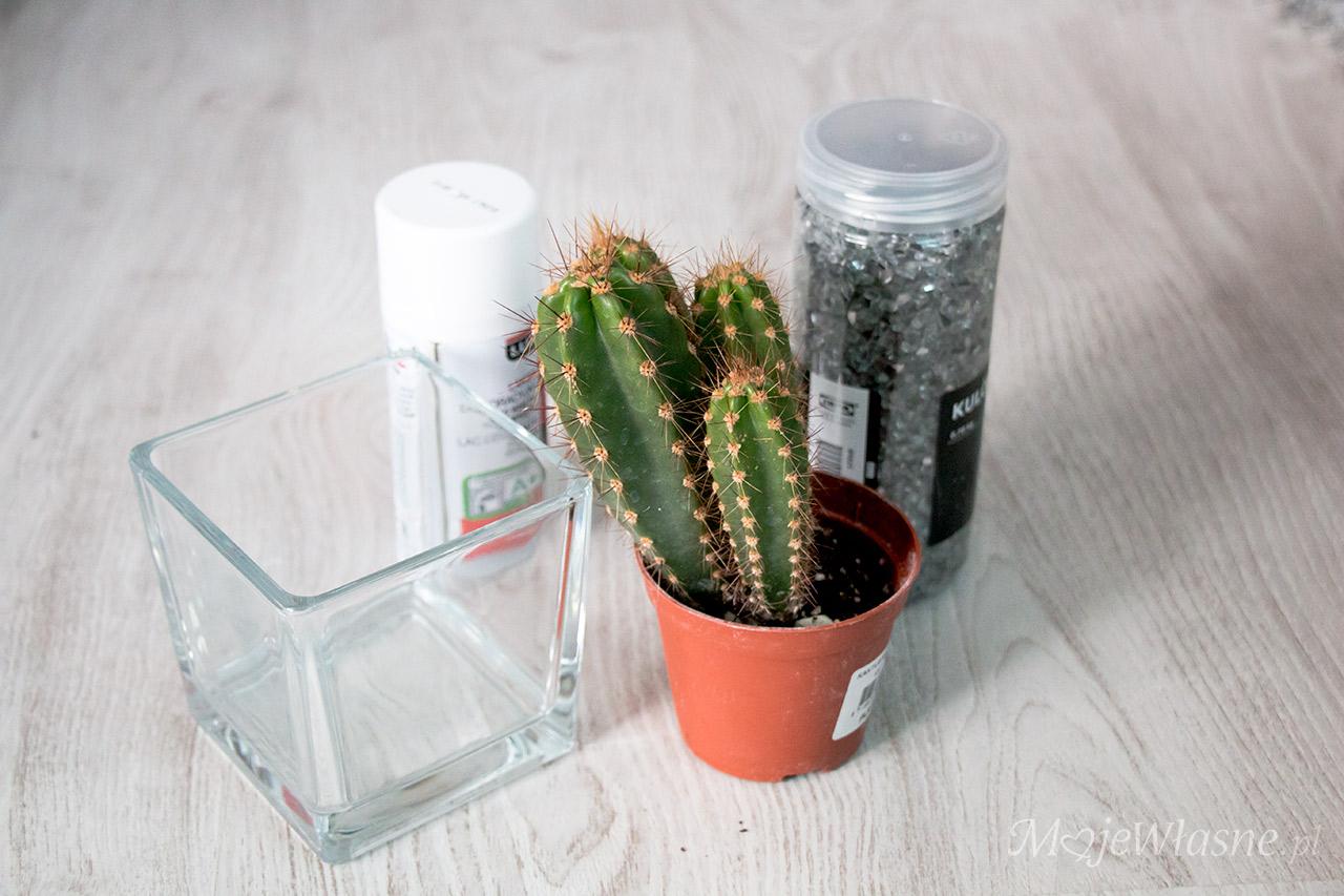 dekoracja kaktus