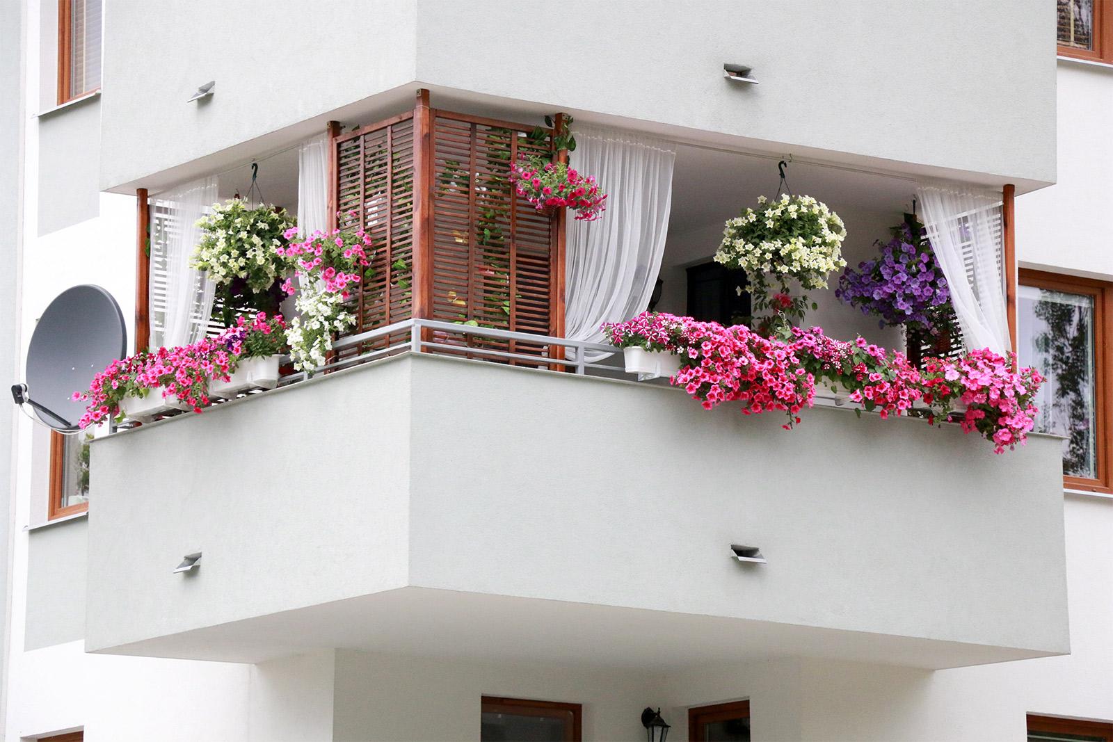 Balkon aranżacja lato 2015