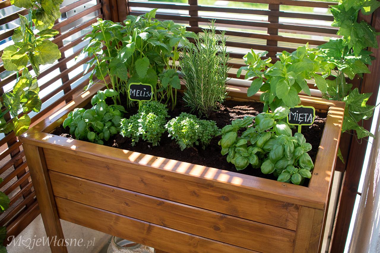 Drewniany planter na zioła